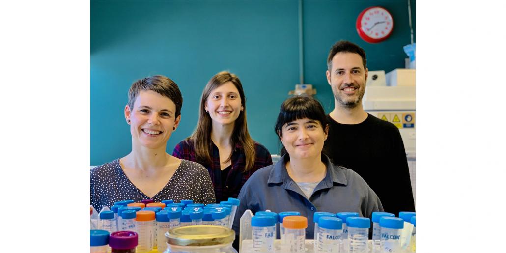 Das Forscherteam von IrsiCaixa konnte im Labor die Wirksamkeit von CPC gegen verschiedene SARS-CoV-2-Varianten bestätigen.